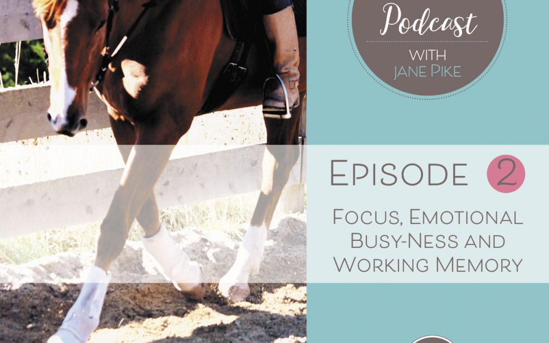 Episode 2 – Focus, emotional busy-ness and working memory